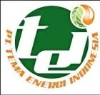 PT. TEMA ENERGI INDONESIA